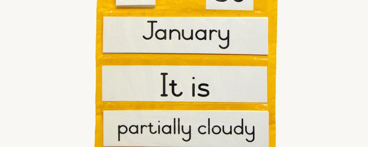Weather Chart Bag